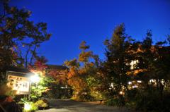 熊本県/黒川温泉 「こうの湯」